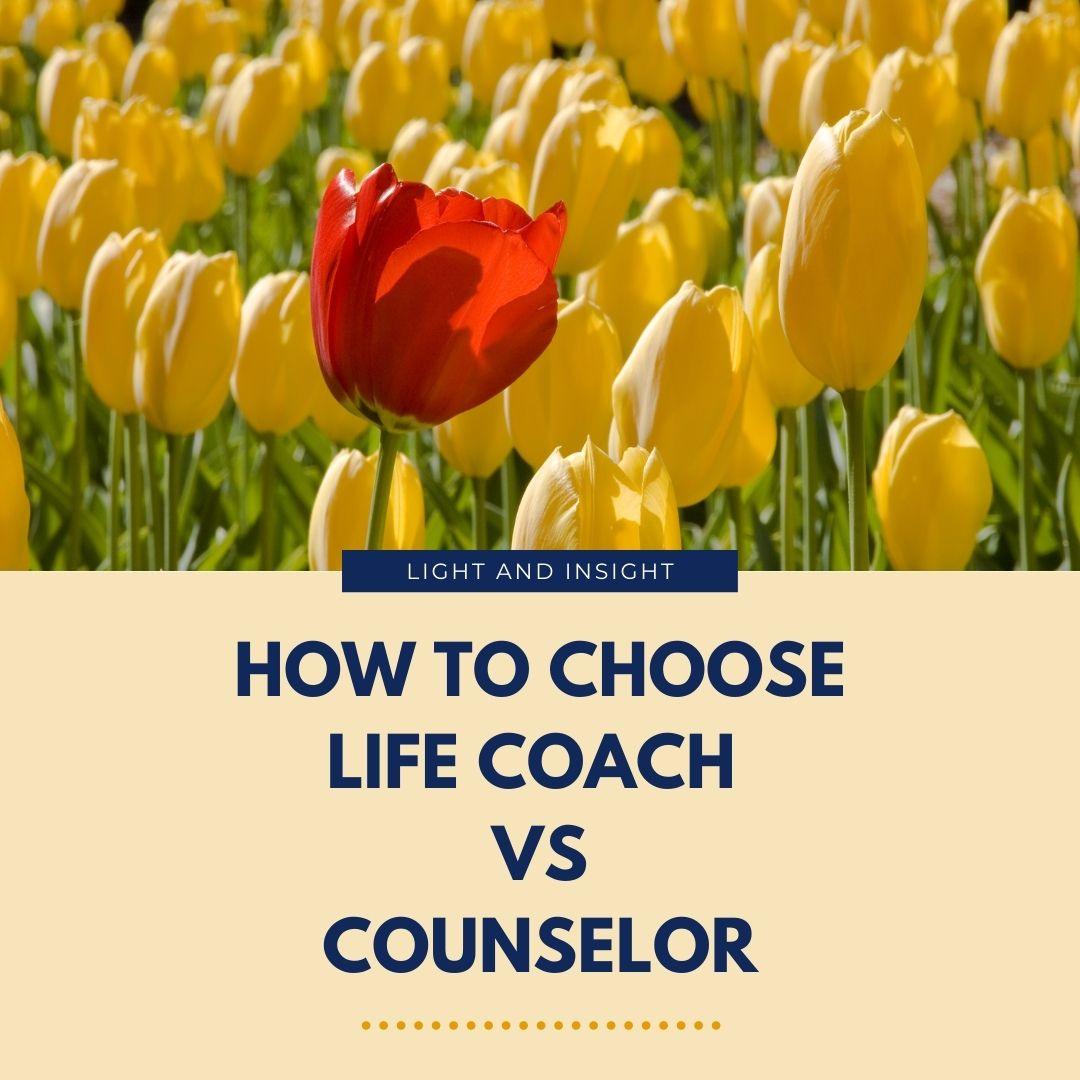 How to Choose Life Coach vs. Counselor Article