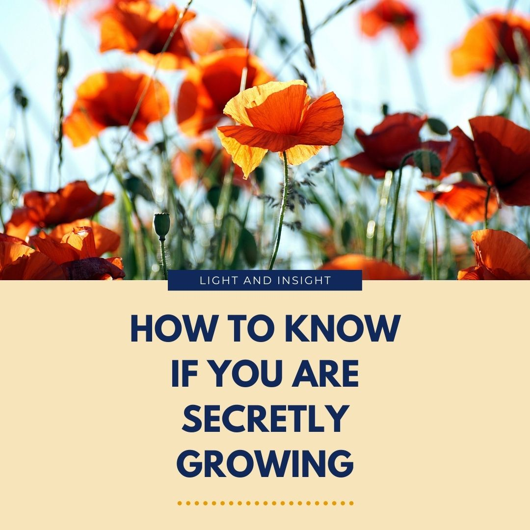 How to Know If You Are Secretly Growing Article